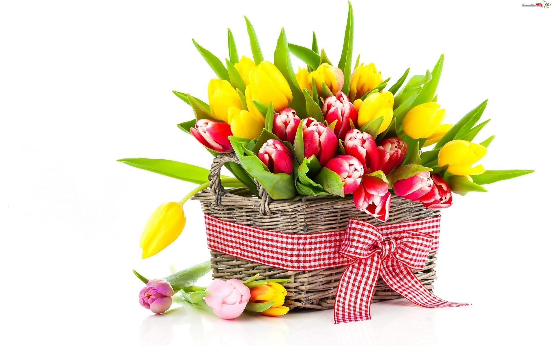 Цветы картинки фото букеты