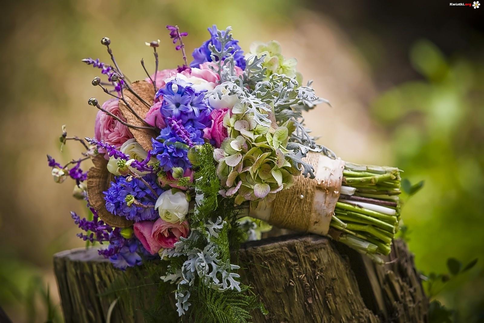 Bukiet, Kwiatów, Pień - Zdjęcia: www.kwiatki.org/kwiatow-bukiet-pien.html