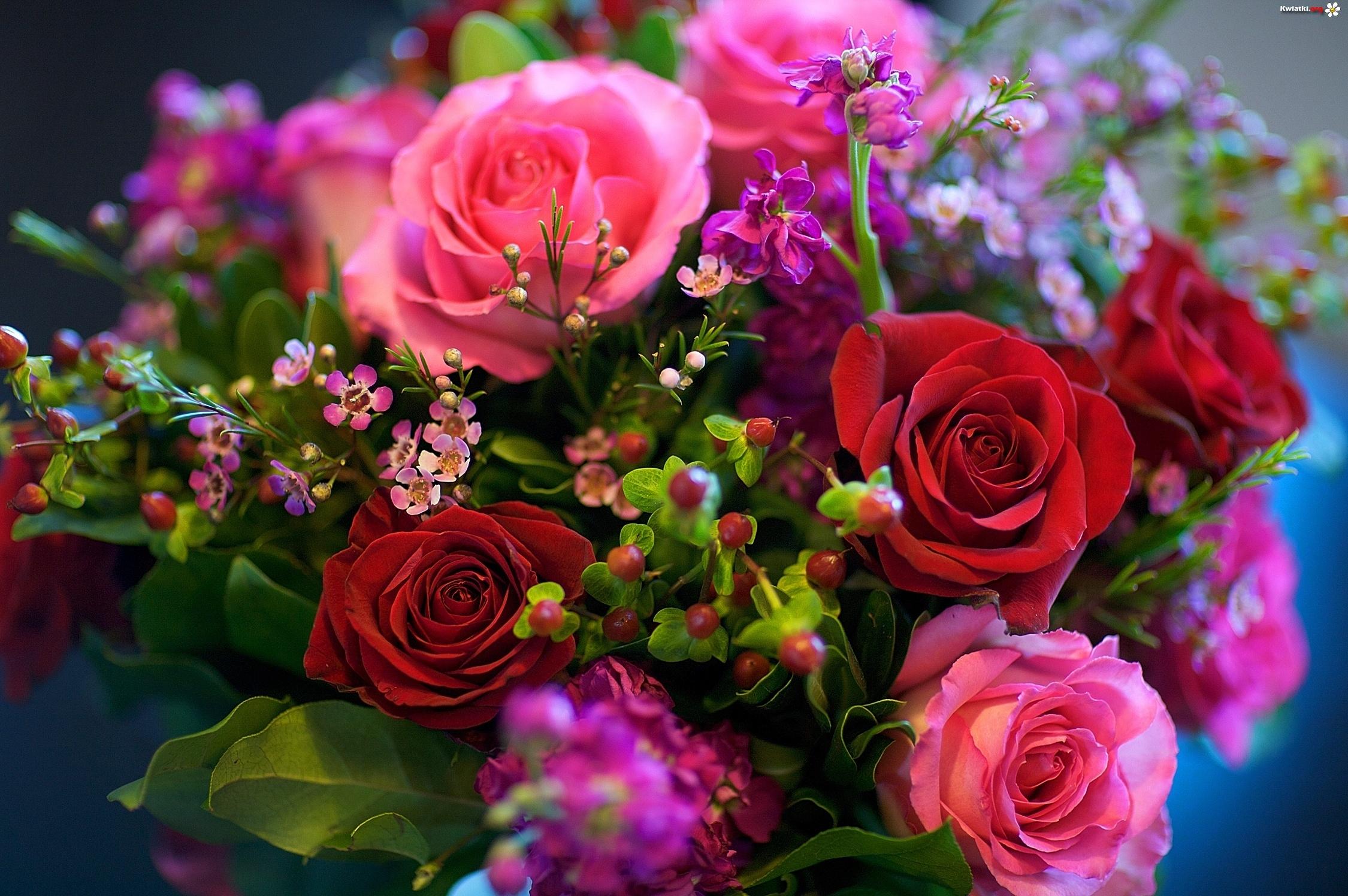 http://www.kwiatki.org/kwiaty/kwiaty-bukiet-4.jpeg